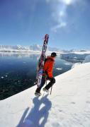 Antarctic 6